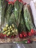 Тюльпаны к 8 марта ассортимент, фото 6