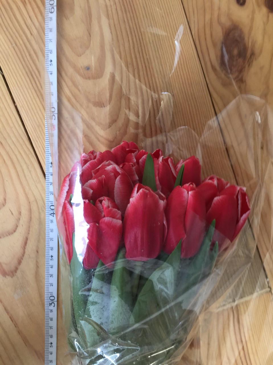Тюльпаны к 8 марта ассортимент