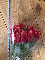 Тюльпаны к 8 марта ассортимент, фото 1