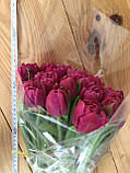 Тюльпаны к 8 марта ассортимент, фото 10