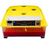 Инкубатор автоматический (на 144 перепелиных яйца)