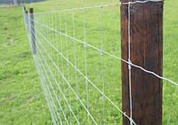 Сетка ДФЛ  (дорожная, фермерская лесная) - 50м Н=1,6м