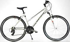 Дорожный велосипед Spartacus 2,0