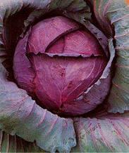 Семена капусты краснокачанной Топаз (имп)