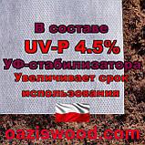 Агроволокно р-50g 3,2*50м біле UV-P 4.5% Premium-Agro Польща, фото 5