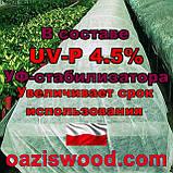 Агроволокно р-40g 6,35*50м белое UV-P 4.5% Premium-Agro Польша, фото 6
