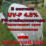 Агроволокно р-50g 3,2*50м біле UV-P 4.5% Premium-Agro Польща, фото 7