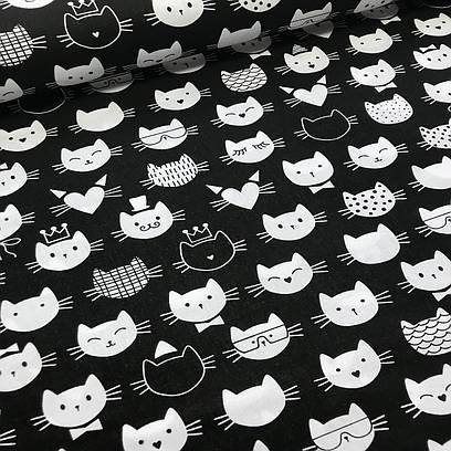 Польская бязь ЛЮКС коты мордочки в шляпах бело-черные на черном №95