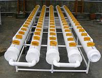 Гидропонные мини-установки 100 посадчных мест