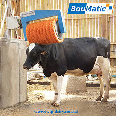 Комфорт коровы