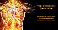 Форматирование физиологии. Международный диплом.