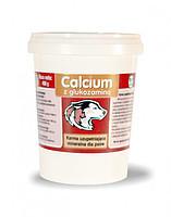 Calcium z glukozamina 2:1 400 г - для беременных, кормящих сук и щенков