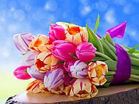 Отдушка Весенние цветы Франция