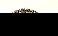 Заготовка из жемчуга черного,рондель , фото 1