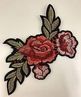 Роза клеевая 23