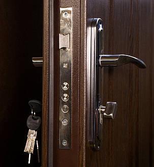 Уличные  входные двери Редфорт  (Redfort)  Арка винорит, фото 2