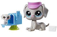 LITTLEST PET SHOP BILL WEIMARAN BERTIE оригинал от Hasbro Собака