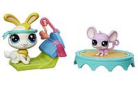 LITTLEST PET SHOP GYM BUDDIES оригинал от Hasbro Кролик Коллекция домашних животных