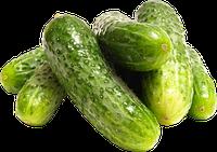 Семена Огурцов пакетированные