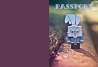 Обложка на паспорт Заяц