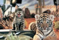 Обложка на паспорт Тигр