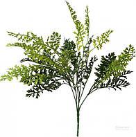 Растение декоративное Сорго HONGYE A5-03550