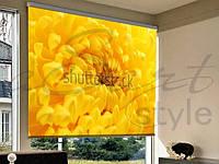 Рулонные шторы на проем желтый цветок макро съемка