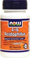Комплекс ацидофильных бактерий (пробиотик) - Ацидофилус 4х6 / Acidophilus 4х6, 60 капсул