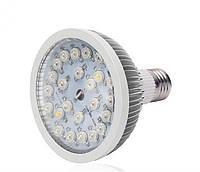 LED фитолампа для растений 24w(24x1w)