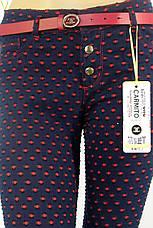 Жіночі штани в горошок Carmito, фото 3