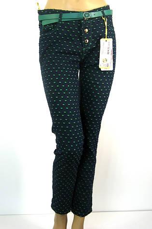 Жіночі штани в горошок Carmito, фото 2