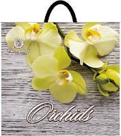 Пакет петля 33*37 Орхидея желтая