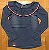Реглан для девочек оптом, Grace, 98-128 см,  № G80075