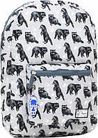 Городской рюкзак трансформер Bagland 16л. Енот (рюкзак женский, мужской рюкзак, наплічник, рюкзачок)