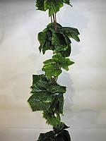 Лиана виноград (250 см)