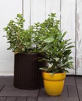 Горшок для цветов 18 л. Cylinder Planter Medium, коричневый, фото 3