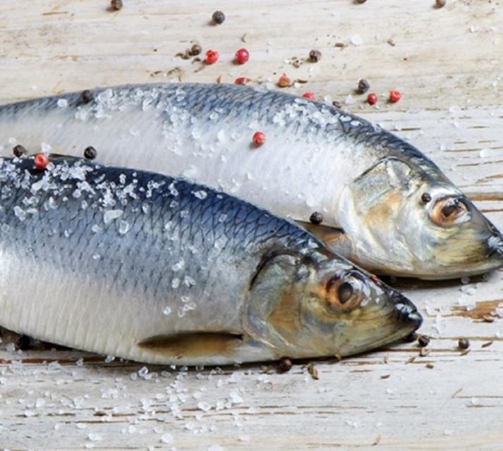 Селедка дунайская свежемороженная, морская, 3-5шт на кг, дунайка