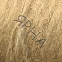 Пряжа на конусах Мохер микс конус (31-золотой беж),(Мохер(80%),Полиамид(20%)),Max(Италия),50(гр),100(м)