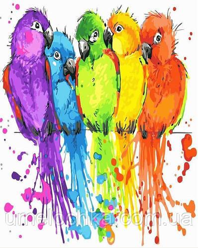 Картина-раскраска Радужные попугайчики (BRM22513) 40 х 50 см