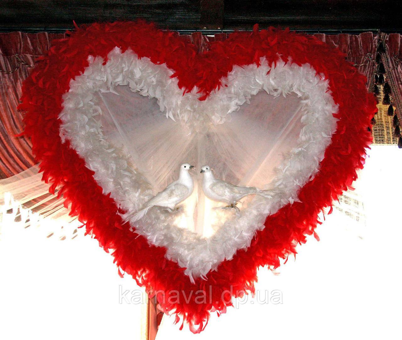 Весільне серце з біло-червоних пір'я напрокат