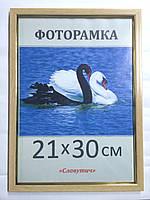 Фоторамка,  пластиковая,  15*21, А5,  рамка для фото, сертификатов, дипломов, грамот,1511-96
