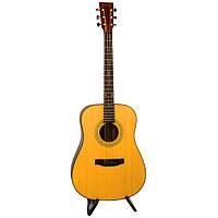 Акустическая Гитара Rafaga D-100NS