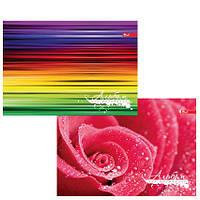 Альбом для рисования     24 л. обложкацвет,мелованный  картон, блок офсет импортный 110г/м2
