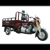 Грузовой мотоцикл Musstang MT200ZH-4V (трицикл; муравей)