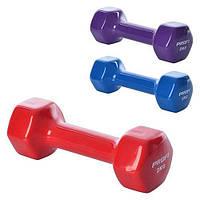 Гантель виниловая 2 кг PROFI M 0290 (фиолетовая, голубая и красная)