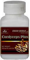 Кордицепс (гриб) от компании GREEN WORLD!Натуральный антибиотик!Сильное противоопухолевое средство!