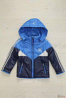 Курточка для мальчика с логотипом (116 см.)  No name 2129000426448