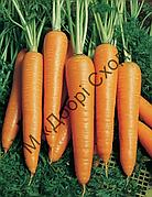 Морква Віта Лонга 1г (Bejo) ТМ Добрі Сходи