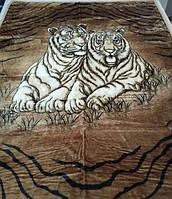 Покрывало Тигры