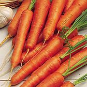 Морква Монанта 2г (Rijk-Zwaan) ТМ Добрі Сходи